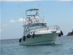 Wellcraft Marine 330 Coastal