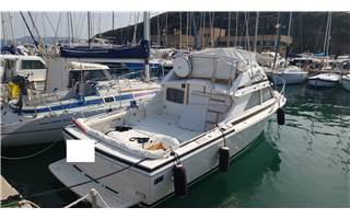 Bertram Yacht 28' SF