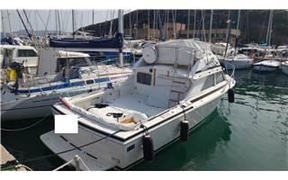 Bertram Yacht 28' SF