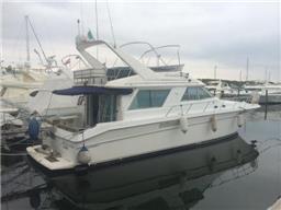 Sea Ray Boats 500 SEDAN BRIDGE