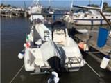 Terminal Boat FEELING 625